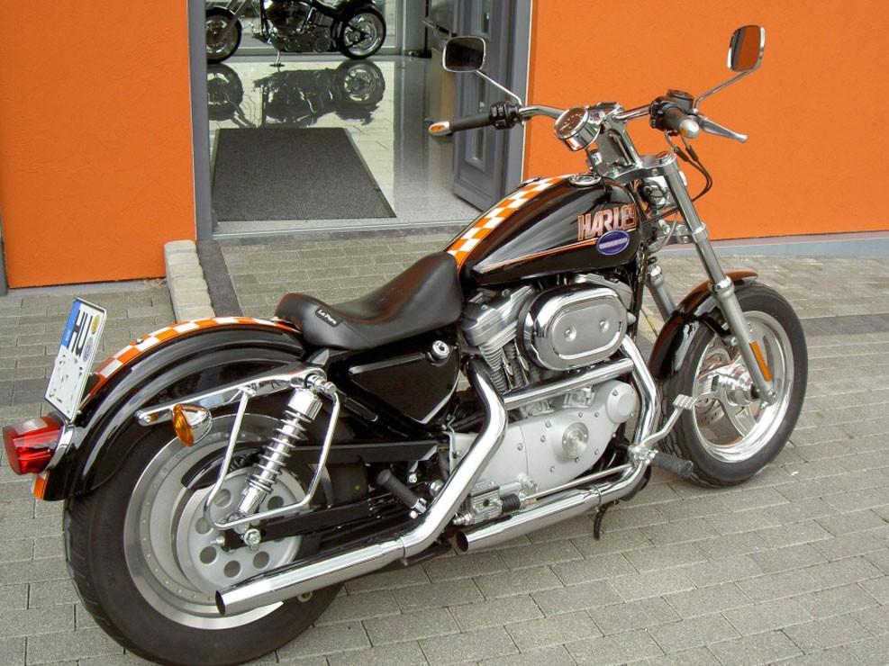 Harley_07.JPG